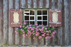 window-1567765_1920